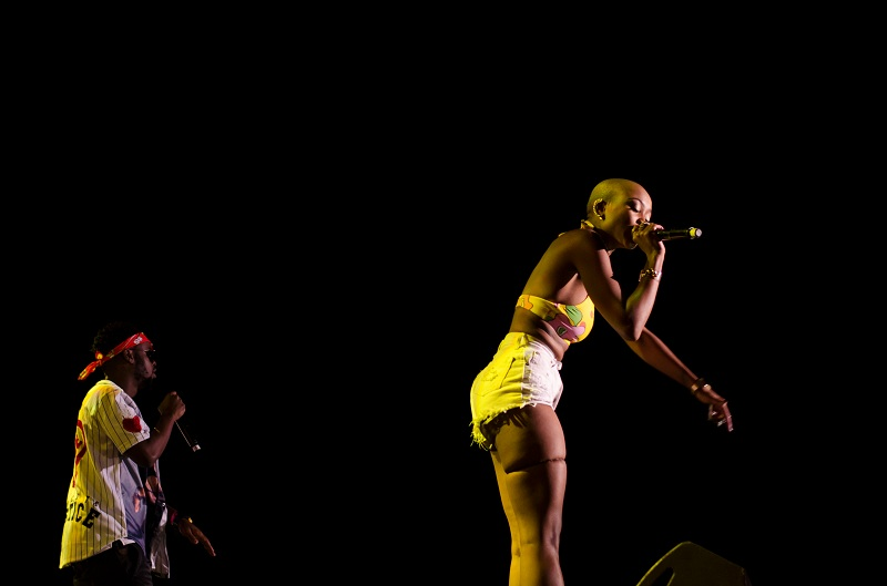 African Music Festival 2015